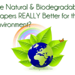 Are Natural and Biodegradable Disposable Diapers Really Better for the Environment?