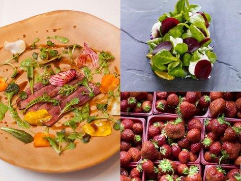 Blue Hill Fresh Organic Food