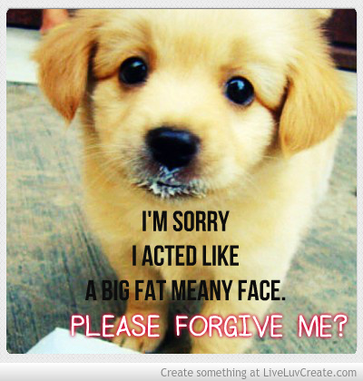 Cute Roses Wallpapers With Wordings Cute Apology 3 The Art Mad