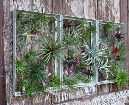 Medium Of Garden Wall Decoration
