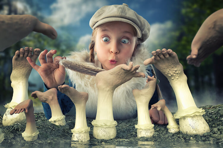 Fall Feather Wallpaper John Wilhelm Creative Fantasy Photography Of His Three