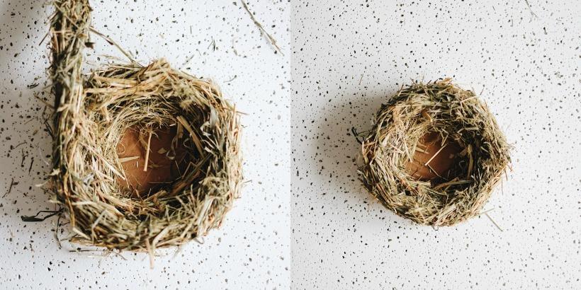Как сделать гнездо птицы своими руками 95