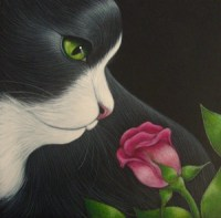 Tuxedo cat with green eyes sniffing a pink rose