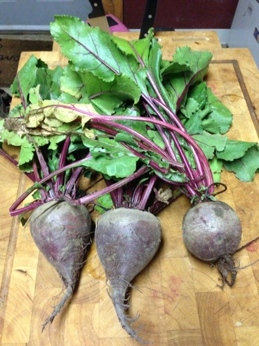 The beets I picked.