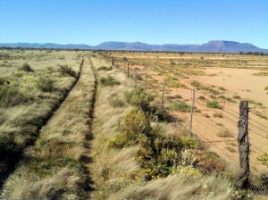 The effects of holistic management in the Karoo, South Africa.