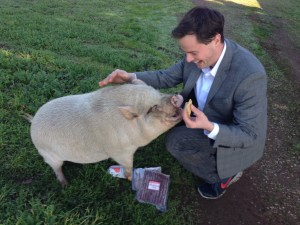 Brian got to meet Silly pig. As you can see, Silly really like him.