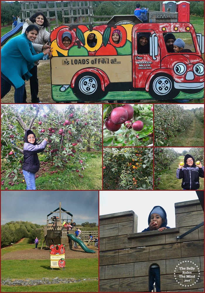 Apple Picking with family and friends Oct 2015