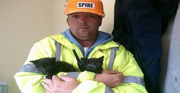 Two kittens had a miraculous escape from the rubble at Anfield after being spotted by builders demolishing the old stadium.