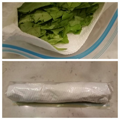 how to keep lettuce and herbs fresh longer