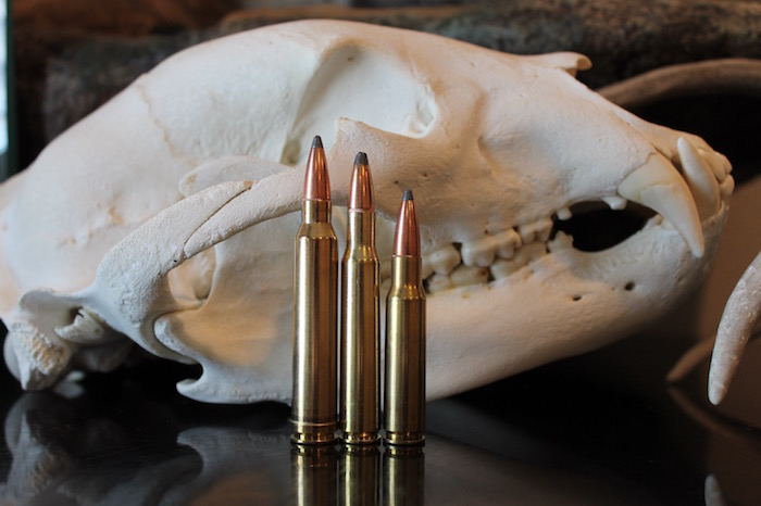 308 vs 30-06 vs 300 Win Mag Which Cartridge Should You Be Hunting