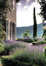 Provencal garden 6