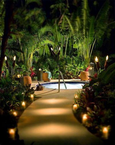 Tropical garden 5