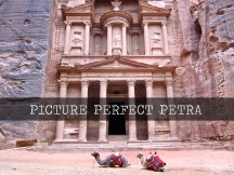 Picture Perfect Petra