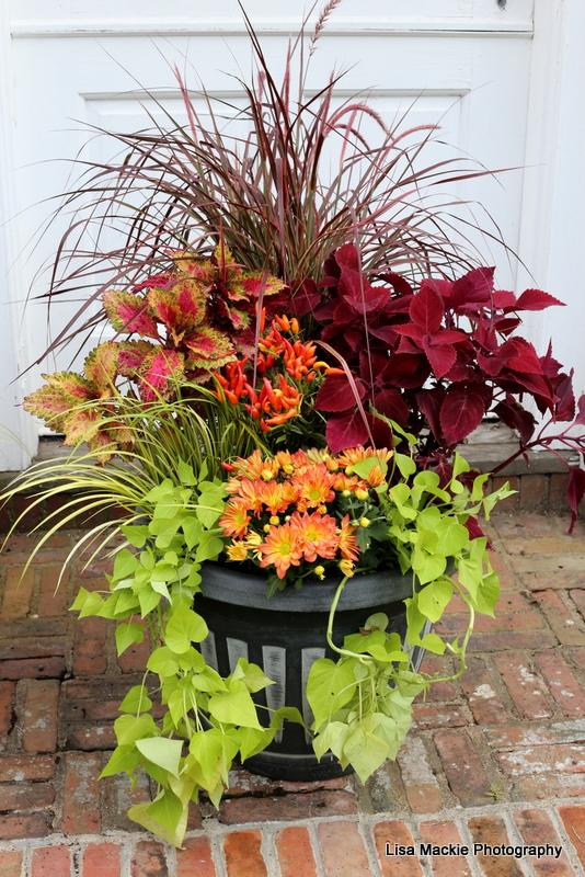 Fall Garden Planters