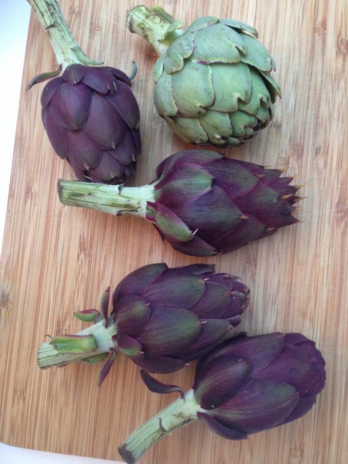 Violetta artichoke
