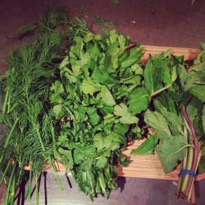 3 tons of herbs