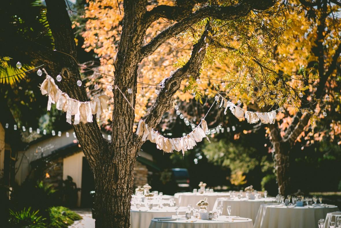 Fullsize Of Backyard Tree Decorations