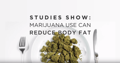 Marijuana Use can Reduce Body Fat