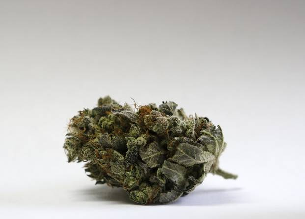 is-it-now-legal-to-smoke-weed-in-florida2