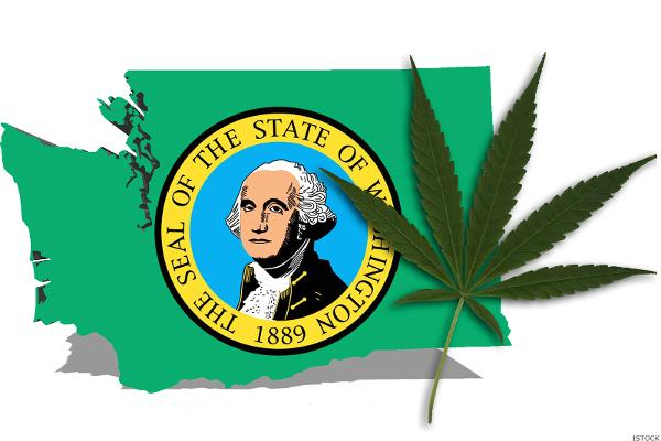 washington-pot