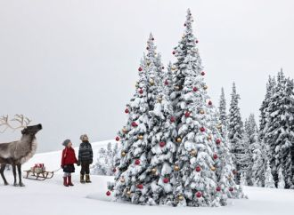 How Likely is a White Christmas?