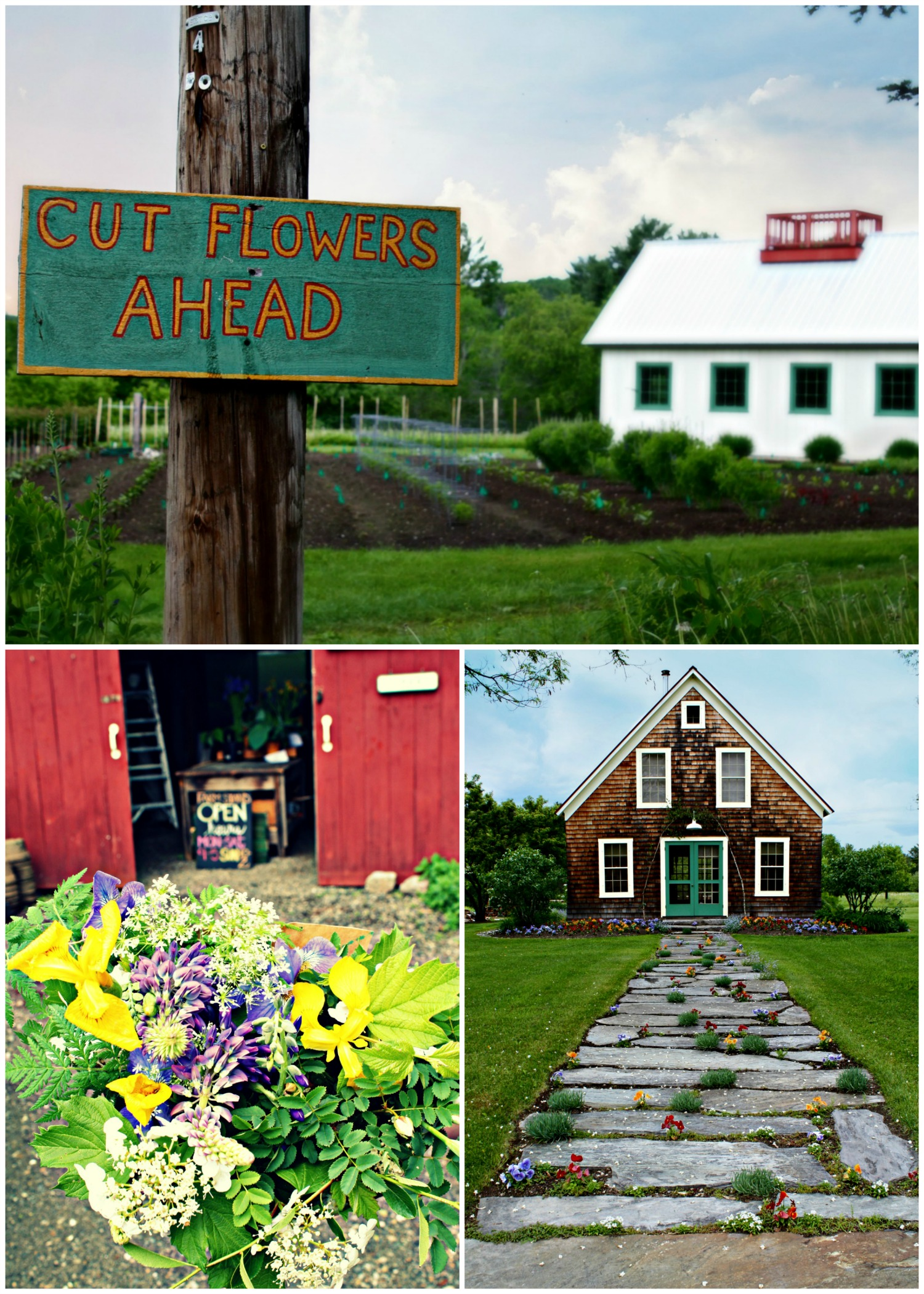 sugar hill flower farm
