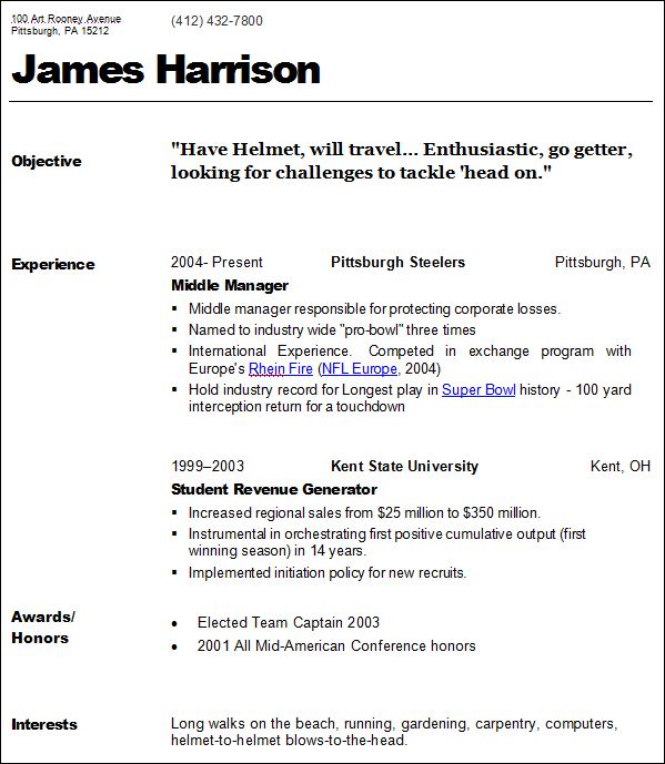 Example Resume Layout | Example Good Resume Template