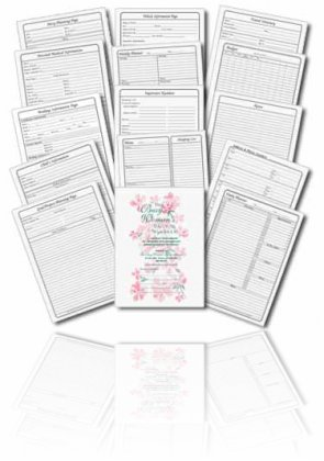 The Busy Woman\u0027s Daily Planner - Full Set - day planner