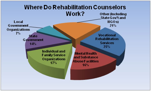 What can I do with a Masters in HR - Rehabilitation Counseling - Mental Health Counselor Job Description