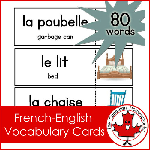French Vocabulary Cards - Label your home with these printable cards - vocab cards