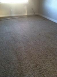 carpet repair Meridian Idaho   thecarpetgeek 208-855-5715