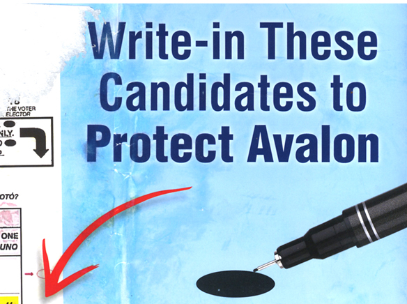 Flyer stirs Avalon voters and candidates The Catalina Islander - how to write a flyer