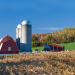 Catholic Rural Life grant to help country parishes in archdiocese