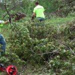 Catholic United aiding storm recovery near Brainerd