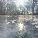 What I learned on the wintry pond