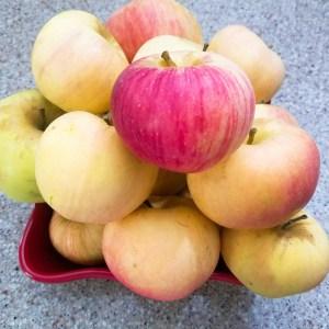 Spye Apples