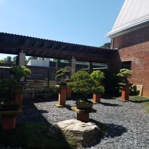 The Bonsai Garden..Monastery of The Holy Spirit