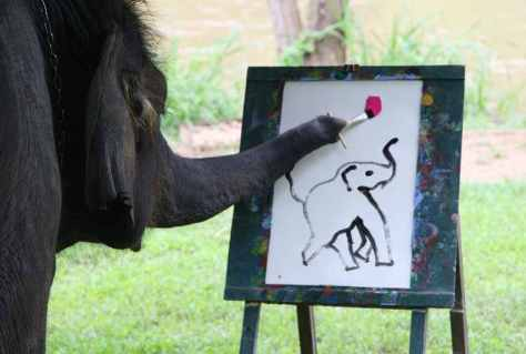 Thailand's Famous Painting Elephant, Suda, Happily At Work For Tourists