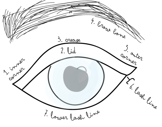 eye makeup tutorial diagram