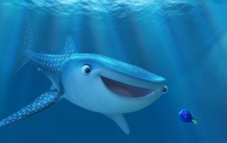 findingdorynew