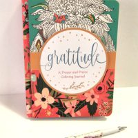 Gratitude: A Prayer And Praise Adult Coloring Book Journal