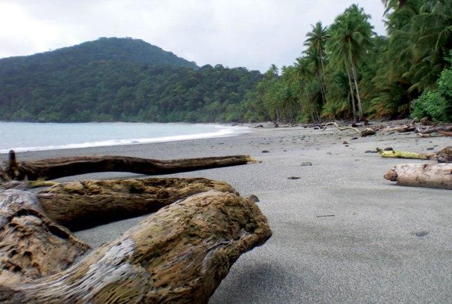 View of the grey beaches of Gorgona island.