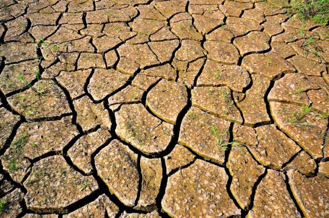 Drought conditions outside of Cali, Colombia by Neil Palmer (CIAT)