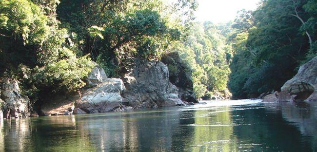 Río La Miel