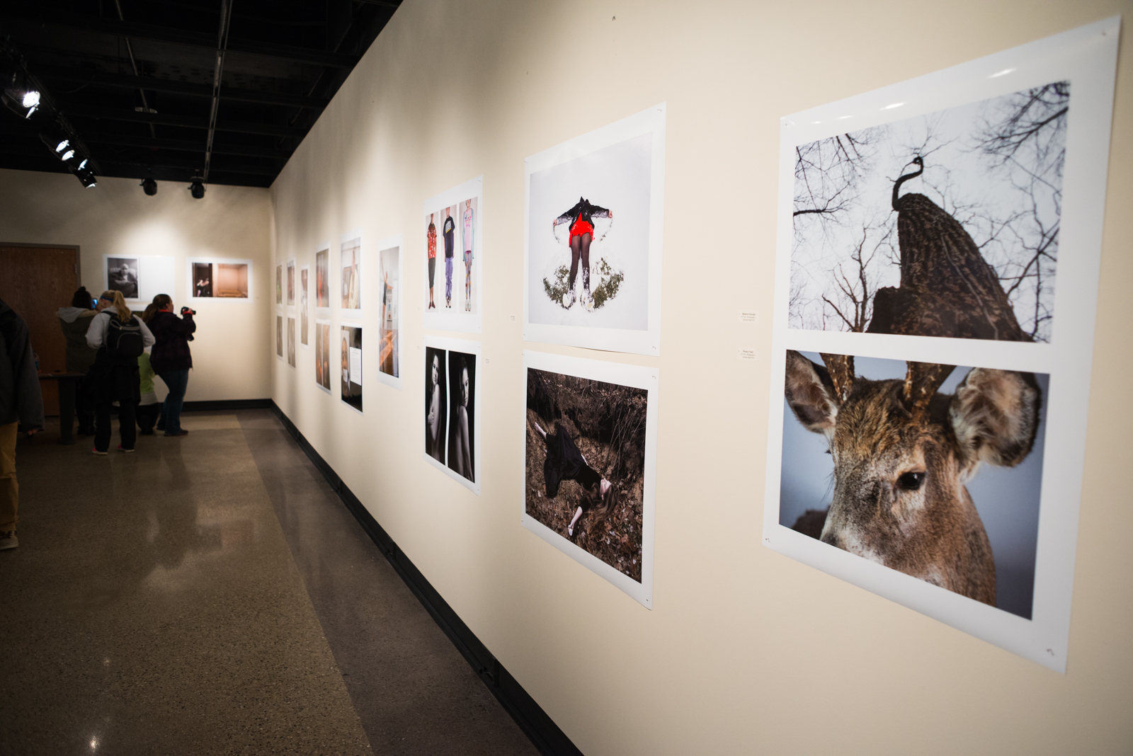 Photography Exhibition More Than 30 Students Inspire Peers In Photo Exhibit The