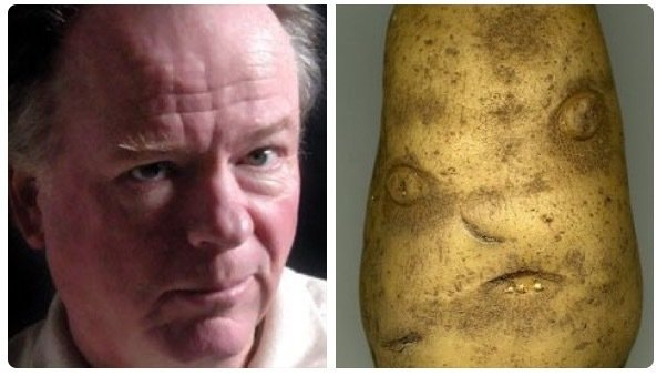 After anti-trans column, petition launched to replace Joe Soucheray with a potato