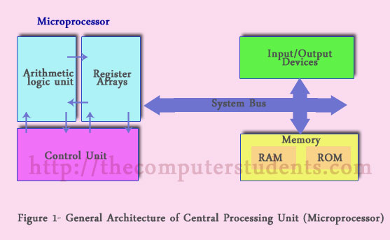 general architecture of central processing unit