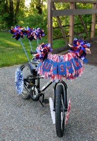 Red, White and Blue Bike Decorations