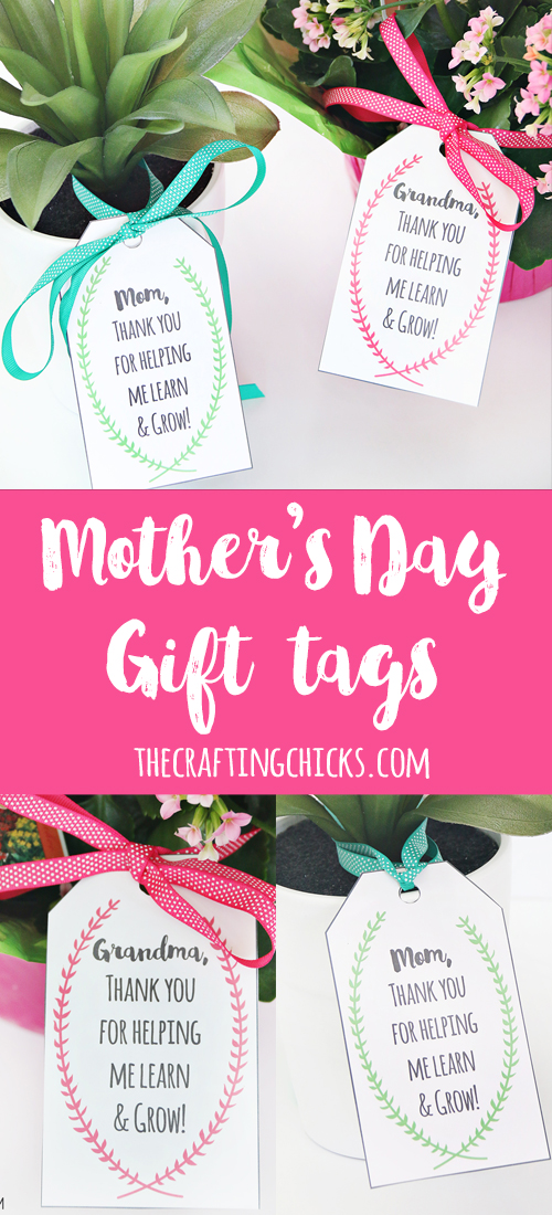 Mother\u0027s Day Plant Printable Gift Tags - The Crafting Chicks