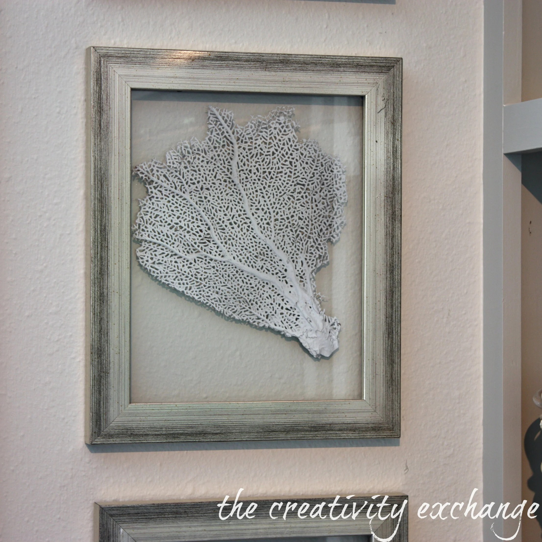 Diy Picture Frame With Glass Diy Double Sided Glass Frames For Framing Shells Or Dyed